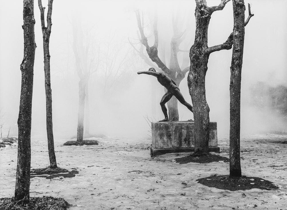 Дмитрий Сироткин фото
